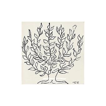 Le Platane Poster Print przez Henri Matisse (20 x 20)