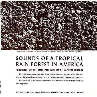 Sounds of a Tropical Rain Forest: Produced for the - Sounds of a Tropical Rain Forest: Produced for the [CD] USA import