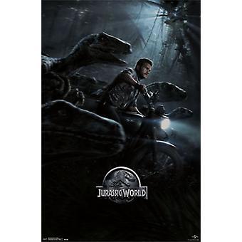Jurassic World - jeden arkusz Poster Print