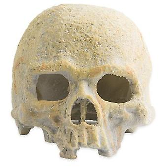 Exo Terra Fluorescent Skull  (Reptiles , Decoration , Caves & Rocks)