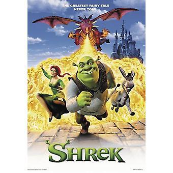 Shrek - der Tollkühne Held  Poster Hauptmotiv
