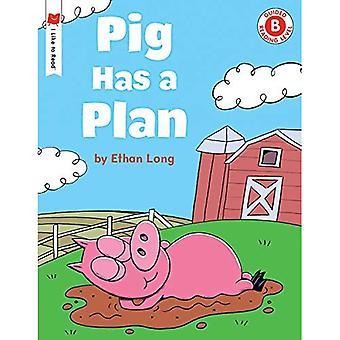 Il maiale ha un piano