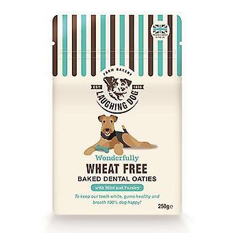 Griner hund hvede gratis Dental Oaties med mynte 250g (pakke med 4)