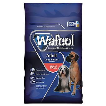 Wafcol vuxen Large/gnt lax & potatis 12kg