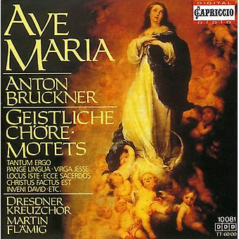 A. Bruckner - Anton Bruckner: Ave Maria; Geistliche Ch Re-Motets [CD] USA import