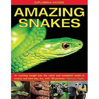 Exploring Nature - Amazing Snakes - an Exciting Insight into the Weird