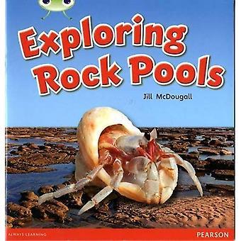 Bug Club Green C Exploring Rock Pools