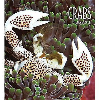 Crabs (Living Wild)