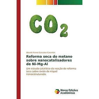 Reforma seca do metano sobre nanocatalisadores de NiMgAl by Gonzlez Carantn Alberth Renne