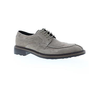 Robert Wayne TF Lace Up Mens gris daim Casual Dress Lace Up chaussures Oxford