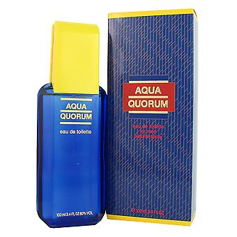 Aqua Quorum mannen door Puig 3.4 oz EDT Spray