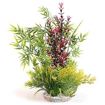 Sydeco naturalne rośliny Calypso gigant 39cm (Paczka 4)