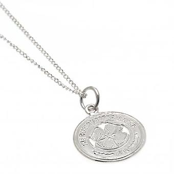 Celtic Sterling Silver Pendant & Chain