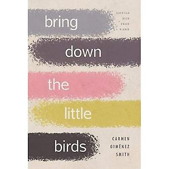 Bring Down the Little Birds: On Mothering, Art, Work and Everything Else (Camino Del Sol)