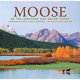 Moose of Yellowstone and Grand Teton by Henry H Holdsworth - Henry H