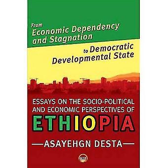 Från ekonomiskt beroende och stagnation till demokratisk utvecklings stat: essäer om socio-politiska och...