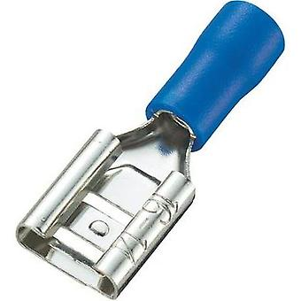 Blade receptacle Connector width: 8.0 mm Connector thickness: 0.8 mm 180 ° Partially insulated Blue Conrad Components 9