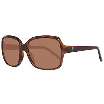 Converse sunglasses the entertainer tortoise ladies Brown