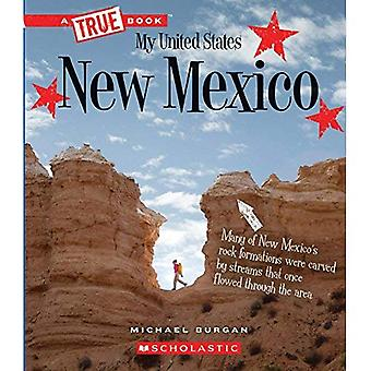 New Mexico (wahres Buch Mein USA)