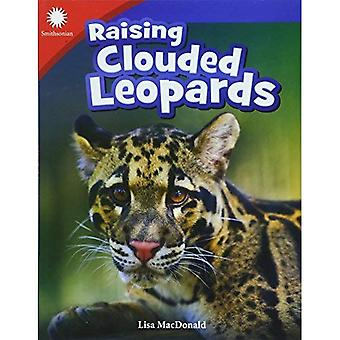 Raising Clouded Leopards (Grade 3) (Smithsonian Readers: Building Literacy with Steam)