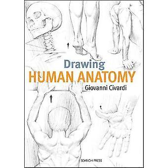 Drawing Human Anatomy by Drawing Human Anatomy - 9781782216056 Book