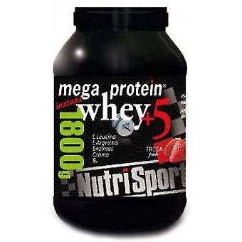 Nutrisport Mega Protein Strawberry (Sport , Proteins and carbohydrates)