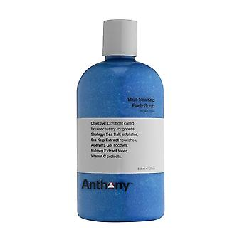 Anthony Logistics Blue Sea Kelp bodyscrub 355ml