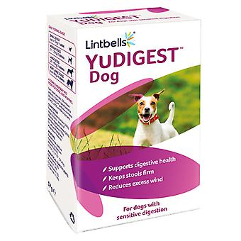 Yudigest 120 Chewable Tablets