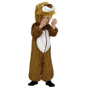 Lion Costume, Small.  Small Age 4-6