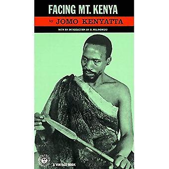 Face à Mont Kenya