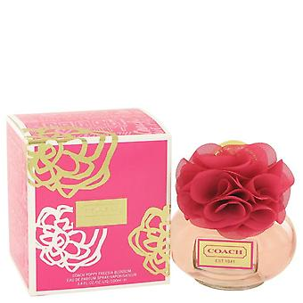 Coach Poppy Freesia Blossom Eau de parfum spray door coach 100 ml