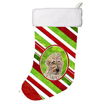 Golden Doodle 2 sukkerstang Christmas Christmas Stocking