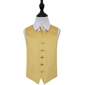 Boy es schlicht Gold Satin Weste & Krawatte Set
