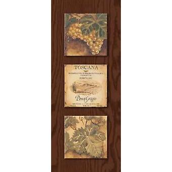 Wine Country Panel I Poster Print by Gregory Gorham