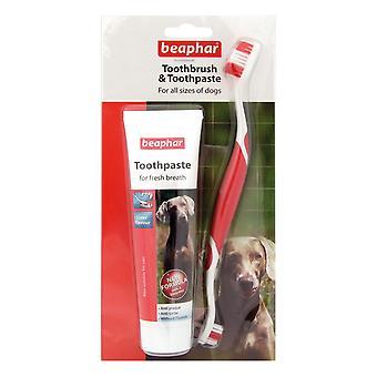 Beaphar todo tamaño de perros Kit Dental (paquete de 6)