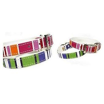 Doggy Things CANVAS COLLAR ROSA TALLA 60CM/24  (Dogs , Walking Accessories , Collars)