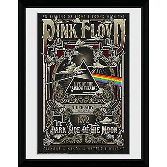 Impresión de color de rosa Floyd Rainbow Theatre colector