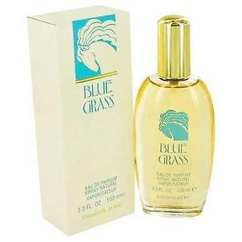 Blue Grass door Elizabeth Arden Eau de parfum spray 3,3 oz (vrouwen) V728-417512