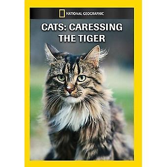 Katzen: Streicheln des Tiger [DVD] USA Imports