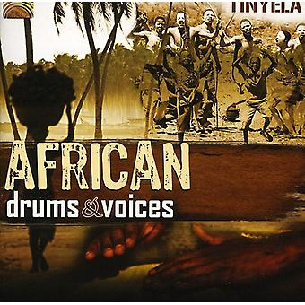 Tinyela - African Drums & Voices [CD] USA import