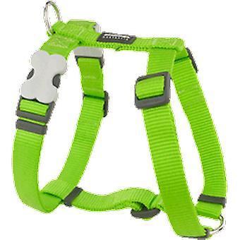 Red Dingo Harness One Touch Smooth Lime (Dogs , Walking Accessories , Harnesses)