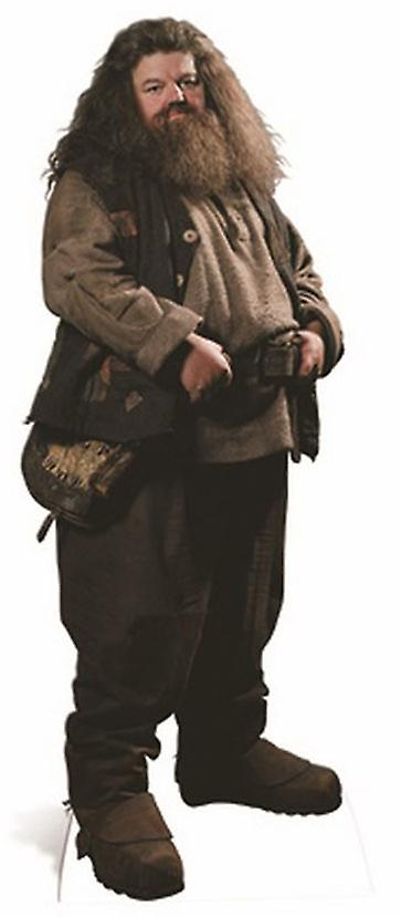 Hagrid Large Cardboard Cutout / Standee - Harry Potter