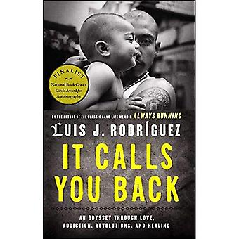 It Calls You Back: An Odyssey Through Love, Addiction, Revolutions, and Healing
