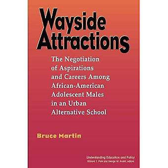 Wayside Attractions The Negotiation of Aspirations and Careers Among African-American Adoles...