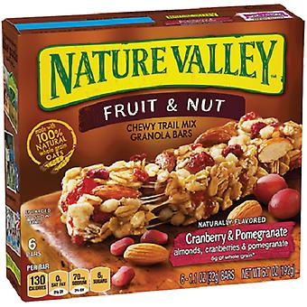 Nature Valley Fruit & Nut Trail Mix Bars Cranberry & Pomegranate
