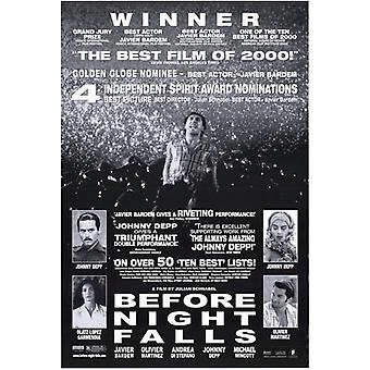 Before Night Falls Movie Poster (11 x 17)