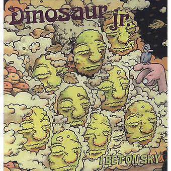 Dinosaur Jr. - I Bet on Sky [Vinyl] USA import