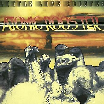 Atomic hane - lille Live Rooster [CD] USA importerer