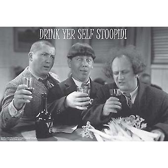 Drei Stooges trinken Yer selbst Stoopid Poster drucken (36 x 24)