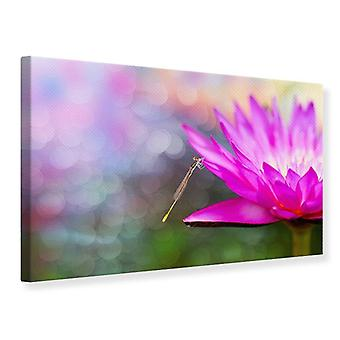 Canvas Print, Visit The Waterlily
